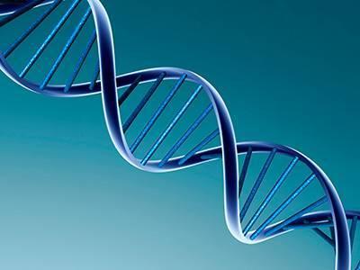 DNA revolutionerar släktforskningen