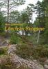 framsida-lon-fran-skogane_field_bild